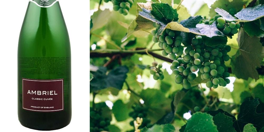 Ambriel Classic Cuvee Brut Traditional Method NV winerist.com