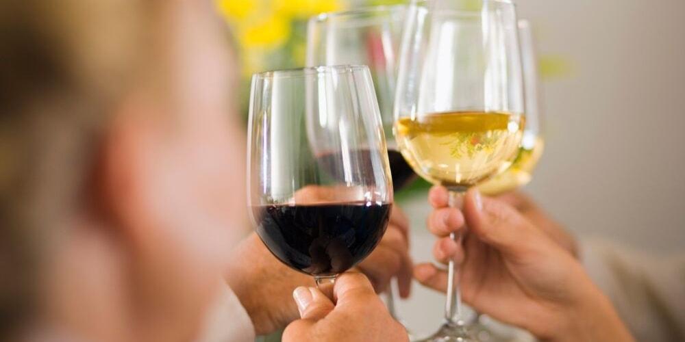 Antica Enotria, Best Wineries to Visit in Puglia, Winerist-min