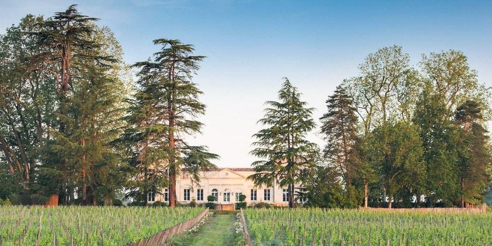 Château Le Pape Bordeaux Winerist