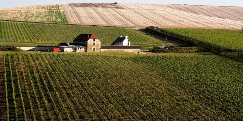 Flint Barns Best Hotels in Sussex Winerist