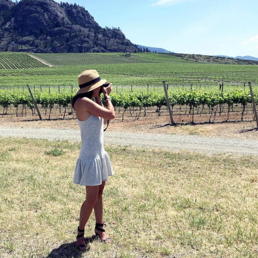 Wineries  - Jillian Harris