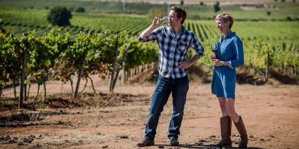 Kingston Family Vineyards, Best Wineries in Casablanca Valley, Chile, Winerist