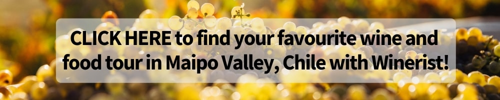 Maipo Valley Wine and Food Tour Winerist