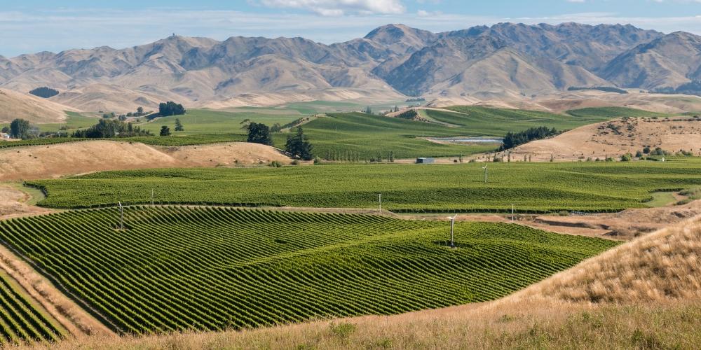 Marlborough, Wine Regions of New Zealand, Winerist