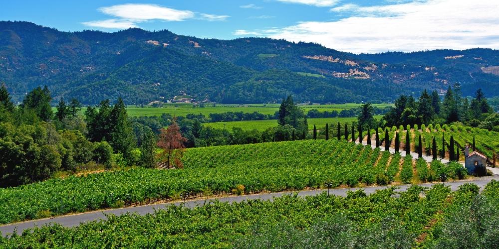 Napa Valley, Orin Swift Cellars, Winerist