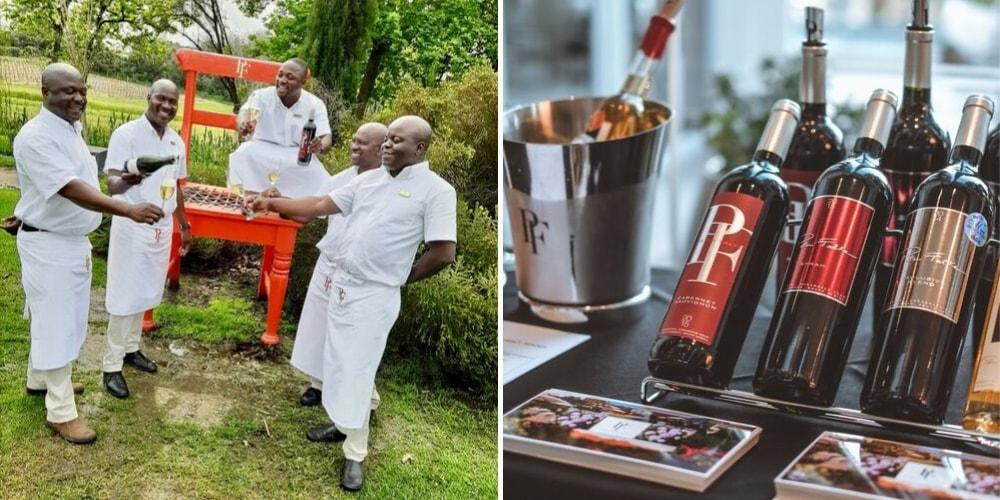Peter Falke Wines, The Best Wineries to Visit in Stellenbosch, Winerist