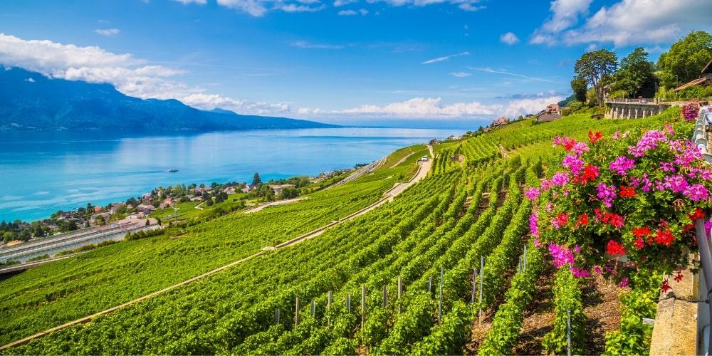 Switzerland, Winerist's Top 10 Travel Destinations for 2020, Winerist