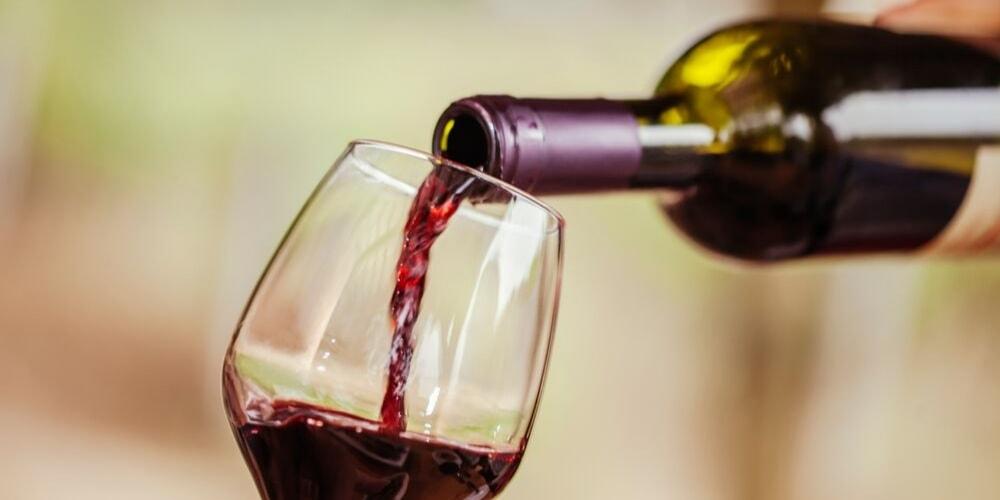 Terra Jovia Estate, Best Wineries to Visit in Puglia, Winerist