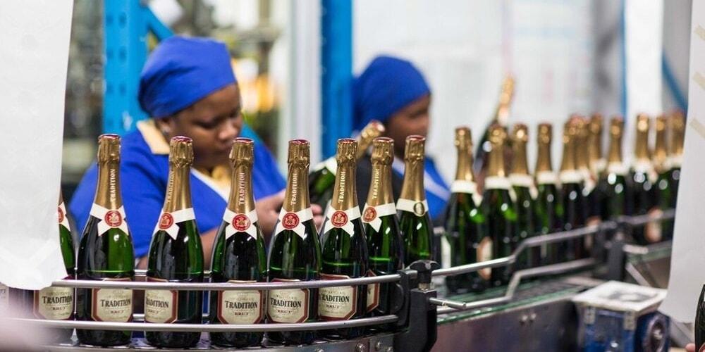 Villiera Wines, The Best Wineries to Visit in Stellenbosch, Winerist