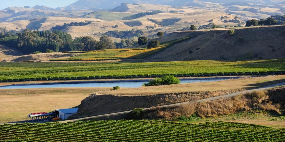 Wairarapa, Wine Regions of New Zealand, Winerist