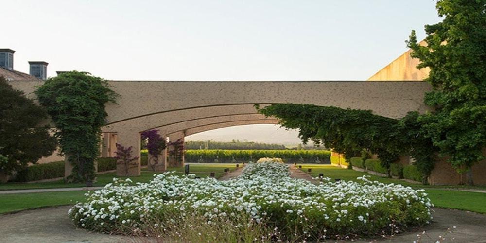 William Cole Vineyards, Best Wineries in Casablanca Valley, Chile, Winerist