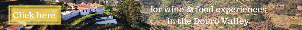 douro travel winerist