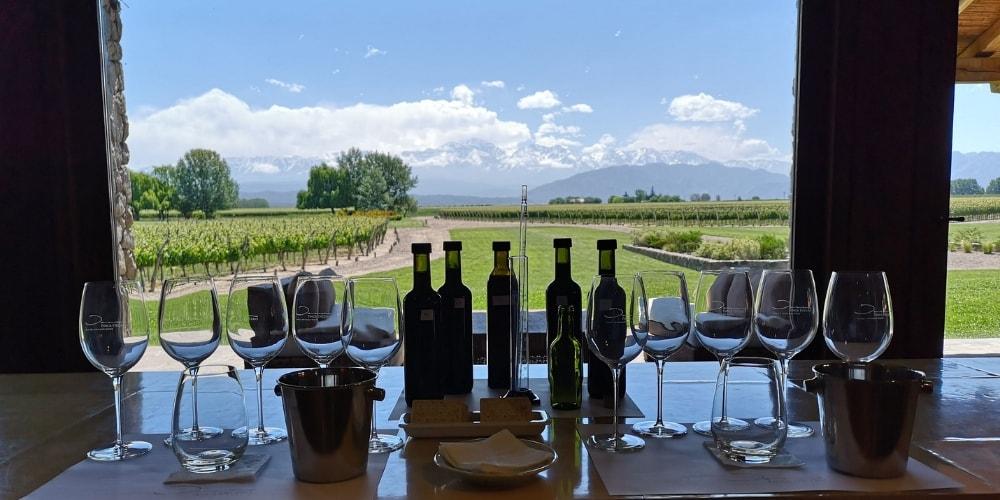 winerist wine tours chile