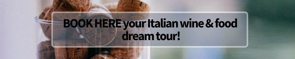 Italian wine and food tours Winerist banner