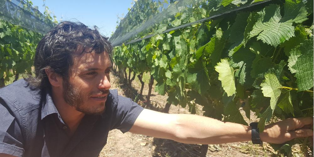 winerist wine tours malbec argentina
