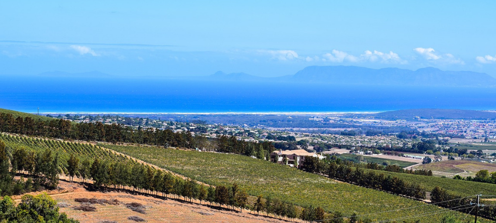 south africa wine tours winerist