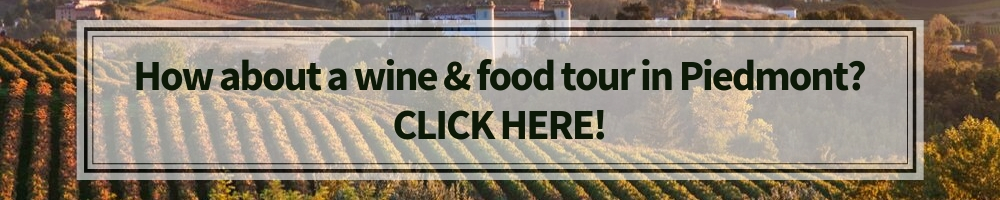 Piedmont wine and food tours, Winerist